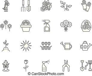 concept, schets, set, iconen, illustratie, vector, lijn, opleiding, tekens & borden, floristry