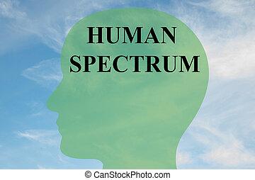 concept, spectre, humain
