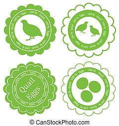 concept, timbre, oeufs, étiquette, ferme, vecteur, arrière-plan vert, caille
