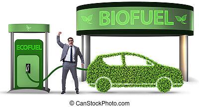 concept, van, bio, brandstof, en, ecologie, bewaring