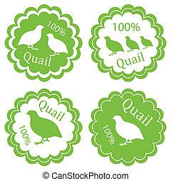 concept, viande, timbre, étiquette, ferme, vecteur, arrière-plan vert, caille