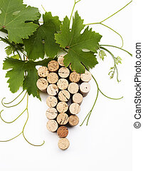 concept wine list design