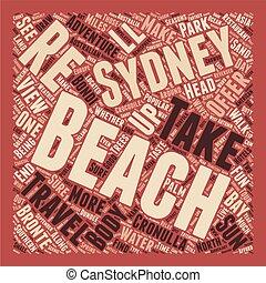 concept, zon, wordcloud, achtergrond, tekst, plezier, stranden