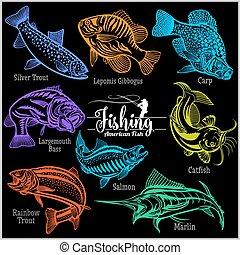 conception, ensemble, t-shirt, américain, black., -, isolé, vecteur, fish, créatif, écusson, logo.