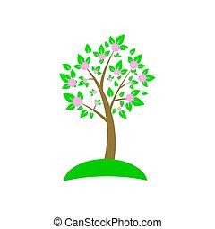conception, magnifique, arbre, printemps