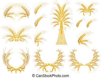 conception, vecteur, ensemble, éléments, blé