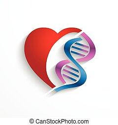 concepto, ADN, doble, símbolos, hélice, concepto, corazón,...