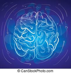 concepto, -, cerebro, y, creatividad
