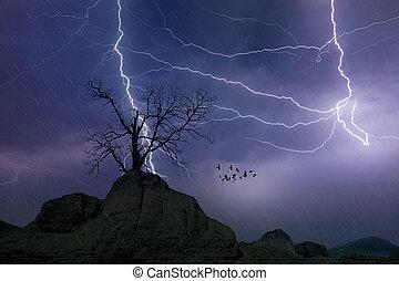 concepto, cielo, tempestuoso, relámpagos, fuerte, pronóstico, oscuridad, tiempo