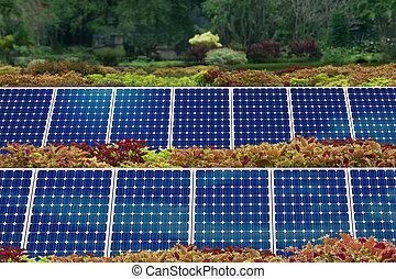 concepto, de, panel solar, jardín