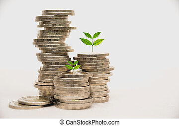 concepto, dinero del ahorro, business., crecer, moneda, pila
