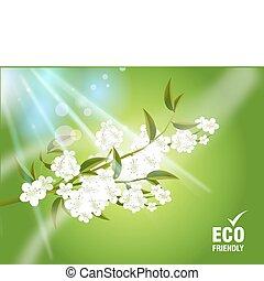 concepto, ecología