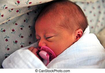 concepto, foto, -, embarazo, bebé, y, parenting