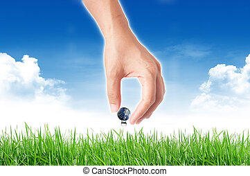 concepto, globo, aislado, mano, Plano de fondo, ecología, tierra, blanco