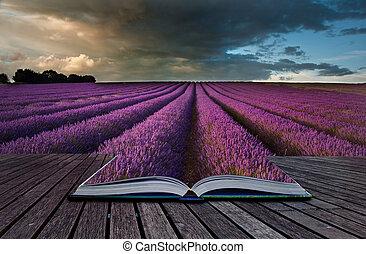 concepto, imagen, Lavanda, creativo, libro, Páginas, paisaje