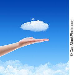 concepto, nube, oferta