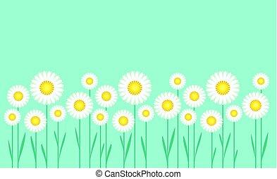 concepto, simple, vector, ilustración, de, margarita, en, cielo azul