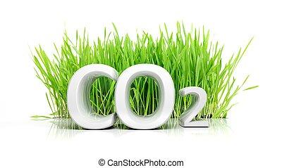 concepto, texto, aislado, ecológico, co2, hierba verde, 3d