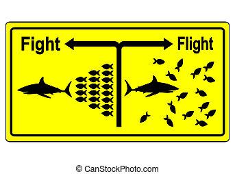 concepto, vuelo, o, pelea