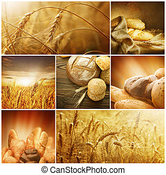 concepts., graan, collage, oogsten, wheat.
