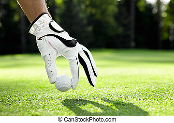Hand in glove puts the ball on the golf course