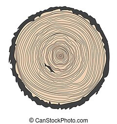 Conceptual background with tree-rings. Ring illustration isolated on white