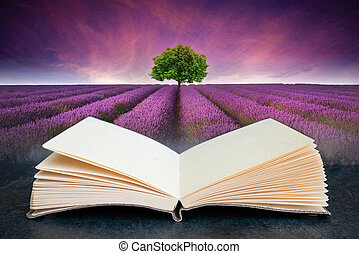 Conceptual composite open book image of Stunning lavender field landscape Summer sunset with single tree on horizon