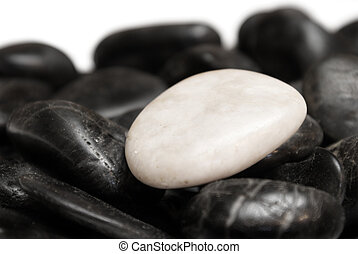 Conceptual Difference - A white stone surrounded by other...