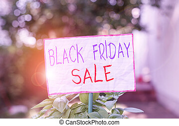 Conceptual hand writing showing Black Friday Sale. Concept meaning Shopping Day Start of the Christmas Shopping Season Plain paper attached to stick and placed in the grassy land
