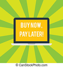 Conceptual hand writing showing Buy Now Pay Later. Business photo showcasing Credit to purchase things payment time after buying Laptop Monitor Personal Computer Tablet Screen Text Space.