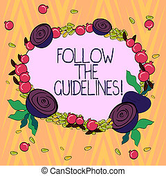 Conceptual hand writing showing Follow The Guidelines. Business photo text Pay attention to general rule, principles or advice Floral Wreath made of Tiny Seeds Small Glossy Pomegranate.