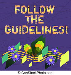 Conceptual hand writing showing Follow The Guidelines. Business photo text Pay attention to general rule, principles or advice Colorful Instrument Maracas Flowers and Curved Musical Staff.