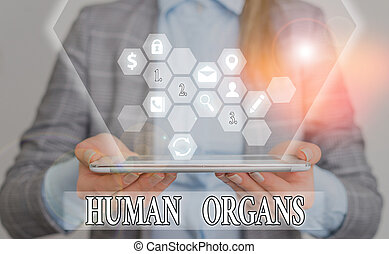 Conceptual hand writing showing Huanalysis Organs. Business ...