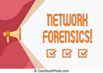 Conceptual hand writing showing Network Forensics. Business...