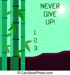 Conceptual hand writing showing Never Give Up. Business photo showcasing Be persistent motivate yourself succeed never look back Colorful Set of Leafy Bamboo and Moon or Sun with Round Beam.