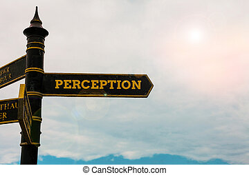 Conceptual hand writing showing Perception. Business photo text individuals organize and interpret their sensory impressions Road sign on the crossroads with blue cloudy sky in the background.