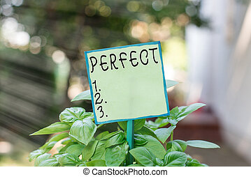 Conceptual hand writing showing Perfect. Business photo text complete without defects or blemishes precisely accurate or exact Plain paper attached to stick and placed in the grassy land.