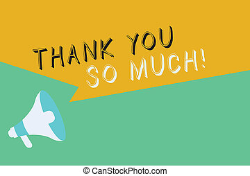 Conceptual hand writing showing Thank You So Much. Business photo showcasing Expression of Gratitude Greetings of Appreciation