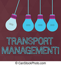 Conceptual hand writing showing Transport Management. Business photo text analysisaging aspect of vehicle maintenance and operations Color Pendant Bulb Hanging with One Different Shade Lightbulb.