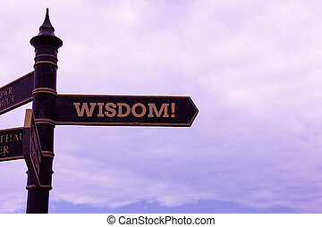 Conceptual hand writing showing Wisdom. Business photo text the ability to use your knowledge and experience to make decisions Road sign on the crossroads with blue cloudy sky in the background.
