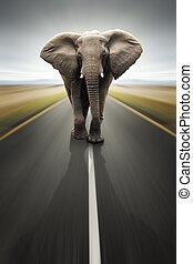 Conceptual - Heavy duty transport / travel by road (Digital ...