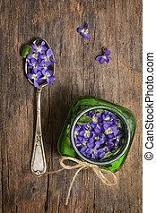 Conceptual Herbaceous Perennial Plant Viola Odorata