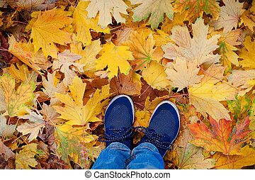 Conceptual hipster style image of legs in boots, trendy gumshoes on background autumn leaves.