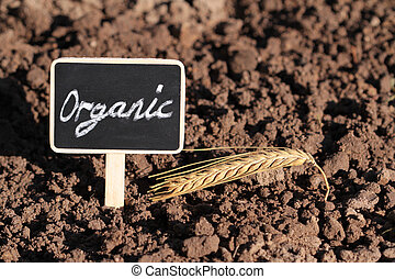 Conceptual image of organic agriculture