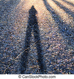 Conceptual photo of man's shadow.