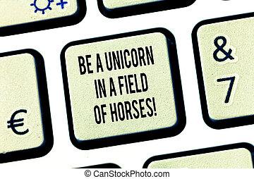 conceptueel, hand het schrijven, het tonen, zijn, een, eenhoorn, in, een, akker, van, horses., zakelijk, foto, tekst, maken, de, verschil, wezen, bijzondere , toetsenbord, klee, intention, te creëren, computer boodschap, idea.