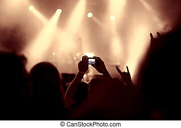 Concert Crowd View