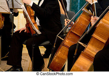 Concert of the classical music