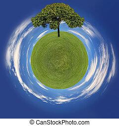 concetto, albero, pianeta, andare, erba verde