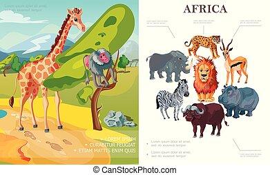 concetto, animali, cartone animato, africano